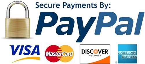 Online Payment by PayPal